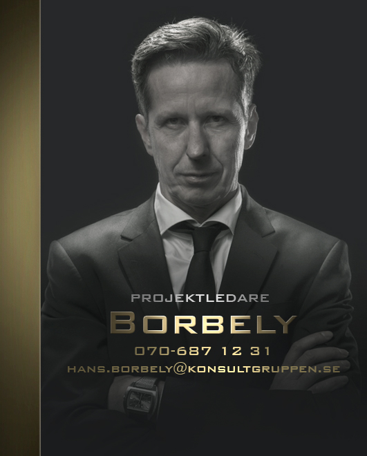 Konsult_Borbely
